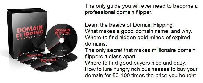 Domain Flipping Mastermind
