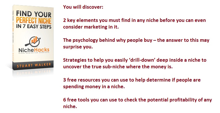 Find Your Perfect Niche