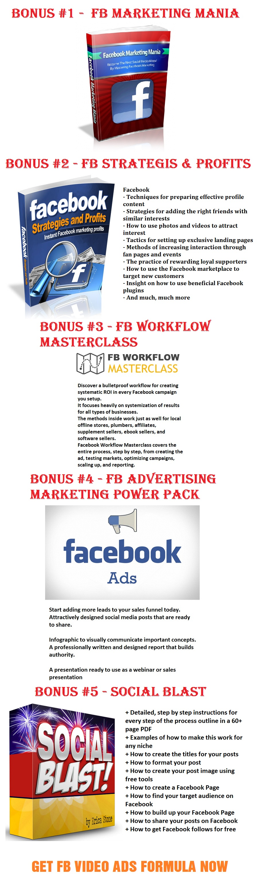FB Video Ads Formula Bonus