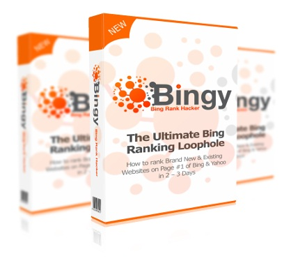 BINGY Review