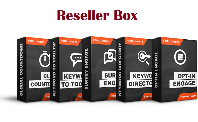 Reseller Box Review
