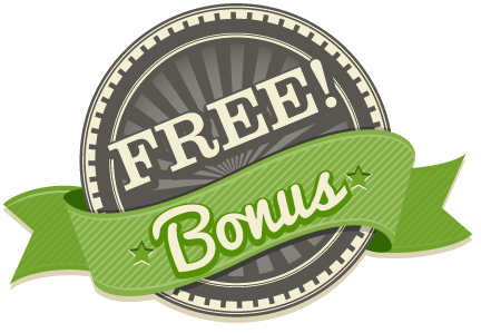 Hastacom WP Theme Bonus