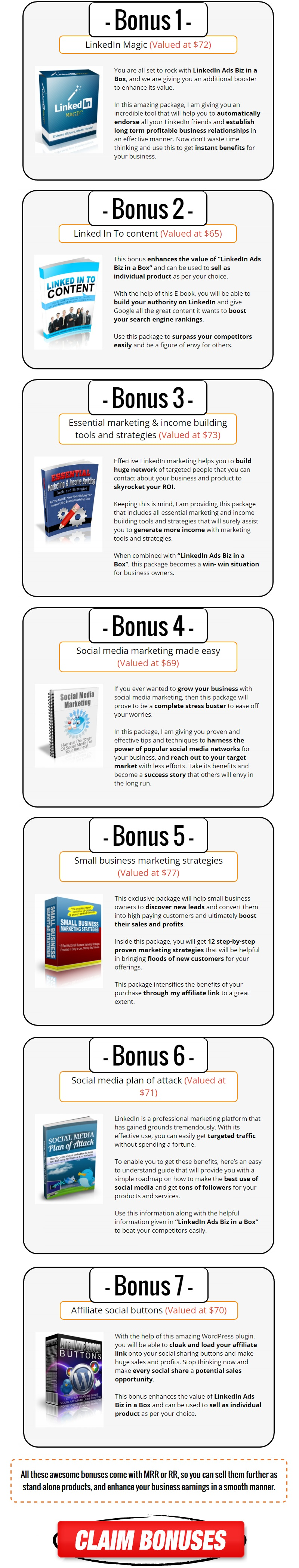 LinkedIn Ads Biz in a Box Bonus