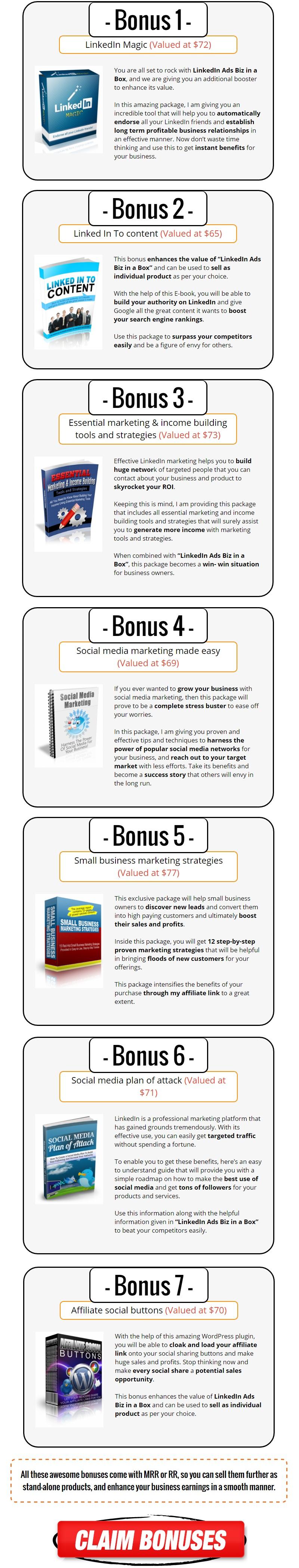 LinkedIn Ads Biz in a Box Bonus