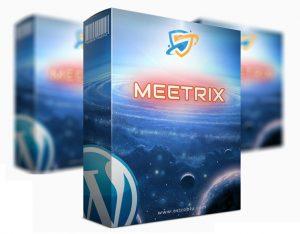 Meetrix Theme Review