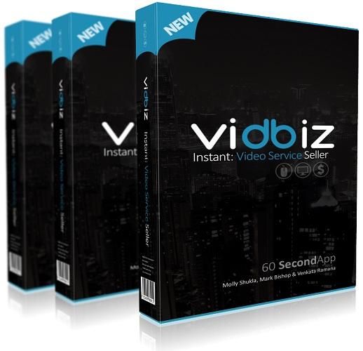 VidBiz Review