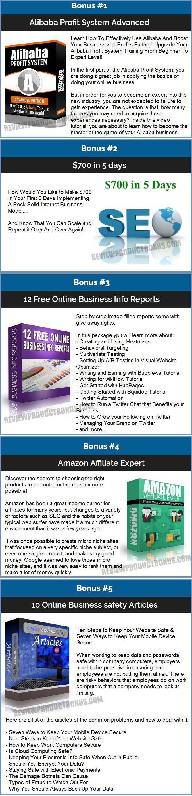 Online Business Mastery PLR Bonus