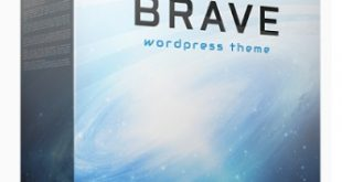 Brave WP Theme Review