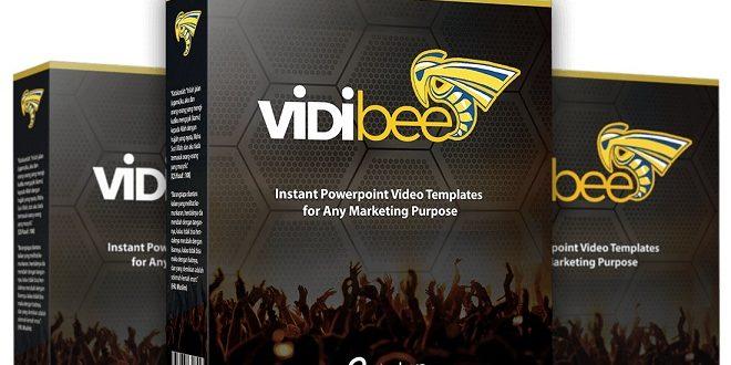 VidiBee Review