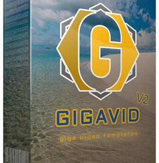 GigaVid V2 Review