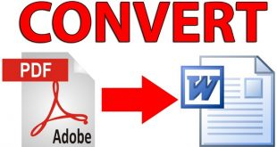 Convert PDF to Word Review