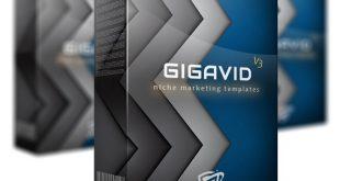 Gigavid V3 Review