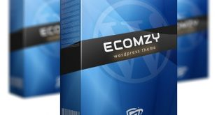 Ecomzy WP Theme Review