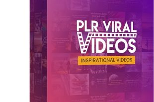PLR Viral Video Review
