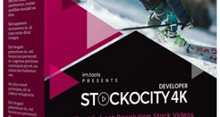 Stockocity 4k Review